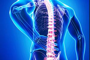 Orthopedie & Traumatologie